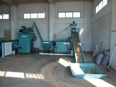 olive press 1