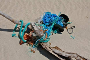 Beach trash, rope, etc.
