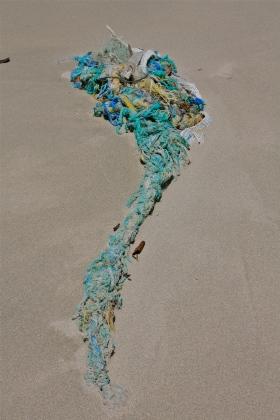 Beach trash, rope, net, etc.