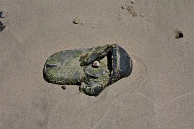 Beach shoe two