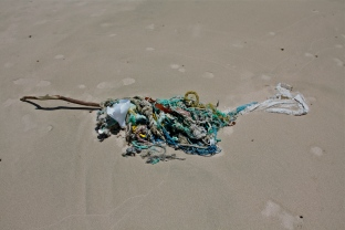 Beach trash, net, string, rope.