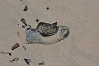 Beach shoe three