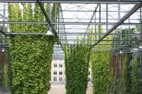 MFO, Zurich, Switzerland, Interior