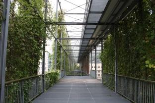MFO Park, Zurich, walkways
