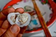 Misc. shellfish, vietnam