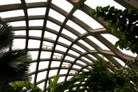 Boettcher Conservatory roof