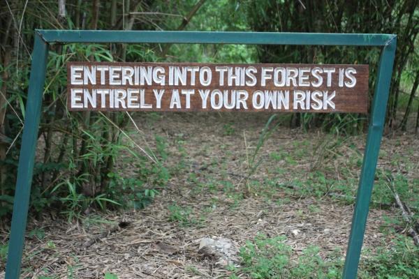 Kenya forest sign
