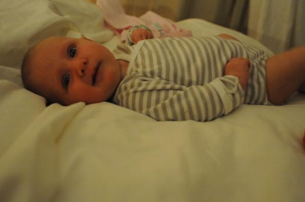 Tilia ten weeks