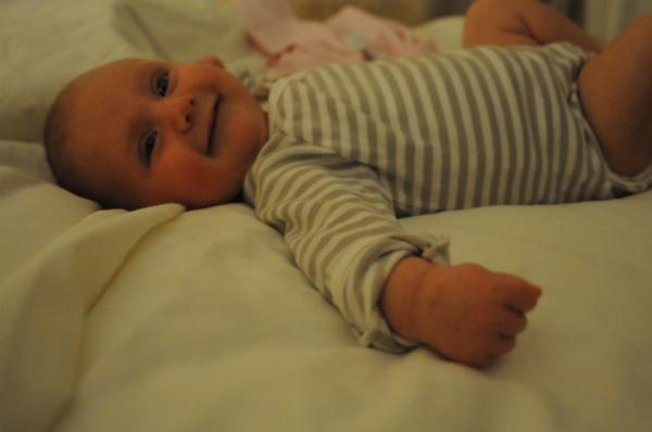 Tilia at ten weeks